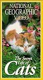 Nat'l Geo: Secret Life of Cats [VHS] [Import]