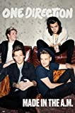 """One Direction - 1D - Music Poster / Print (Made In The A.M.) (Size: 24"""" x 36"""")"""