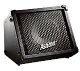 Ashton BSK158 Hochleistungs-Verstärker für Straßenmusiker