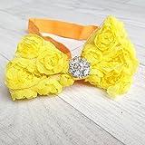 Cinta de pelo para bebé, diseño de niña, modelo diseño de encaje, color amarillo transparente