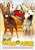 捨て犬マッカムの大冒険 [DVD]