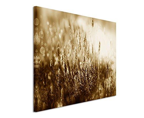 120-x-80-cm-cuadro-de-foto-lienzo-de-la-imagen-en-sepia-florecimiento-del-arbol-de-flores-de-lavanda