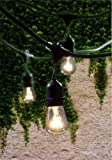 Bulbrite String15/E26-S14KT Outdoor String Light with Incandescent 11S14 Bulbs with 15 Lights, 48-Feet