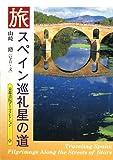 スペイン巡礼 星の道 (京都書院アーツコレクション)