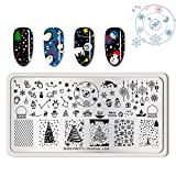 Summer Fruit Nail Art Stamping Template Tropical Punch Pattern Rectangle Image Plate Stamping Polish Needed BP-C-L005 (Color: BP-C-L005)