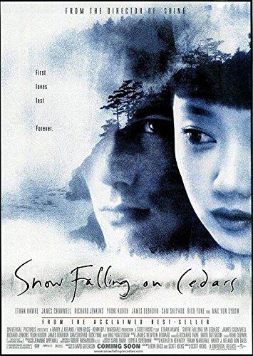 Schnee, der auf Zedern fällt [VHS]