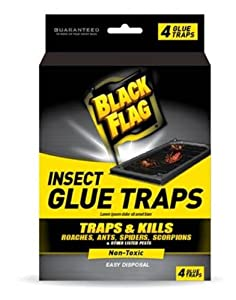 Black Flag Insect Glue Trap