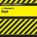 Iliad: CliffsNotes Audiobook by Bob Linn, Ph.D. Narrated by Dan John Miller