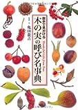 木の実の呼び名事典 (散歩で見かける)