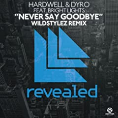 Never Say Goodbye (Wildstylez Remix)
