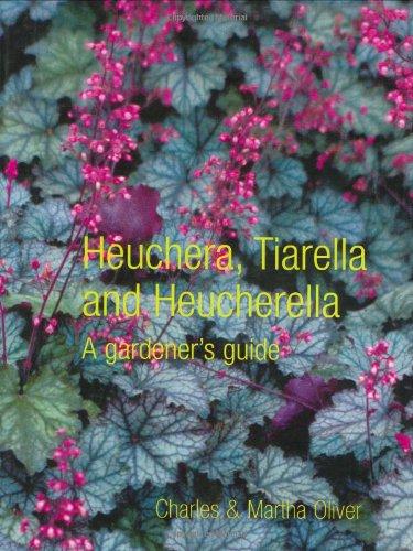 Heuchera, Tiarella and Heucherella