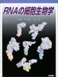 RNAの細胞生物学