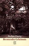 Brennendes Geheimnis: Erzählung (Fiction, Poetry & Drama)
