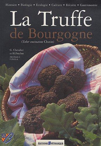 La Truffe de Bourgogne : (Tuber ucinatum Chatin)
