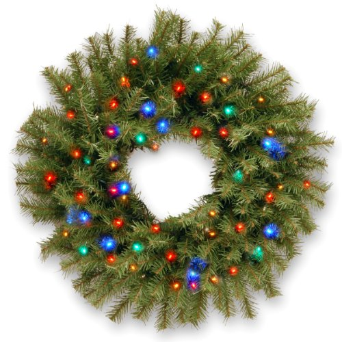 National Tree Nf-309-24W-B 24-Inch Norwood Fir Wreath With 50 Concave 4-Color Multi Led Lights-Battery Operated-Timer