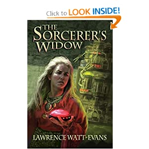 The Sorcerer's Widow by Lawrence Watt-Evans