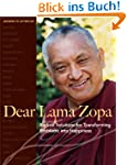 Dear Lama Zopa: Radical Solutions for...