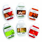 City Creek Candles 6-Pack Variety Wax Melts, 2-Ounce, Fall Group