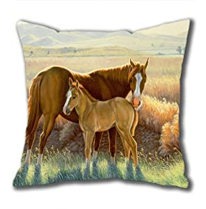 Illustration Painting Dallas Standard Size Design Square Pillowcase/Cotton Pillowcase with Invisible Zipper in 40*40CM 16*16(527)-527011 by Square Pillowcase