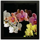Framed Floral Wall Paintings For Living Room And Bedroom. Frame Size (12 Inch X 12 Inch, (Wood, 30 Cm X 3 Cm X 30 Cm, Special Effect Textured) - B071PCL2WZ