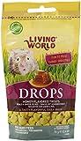 Living World Drops Hamster Treat, 2.6-Ounce, Honey