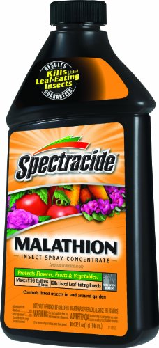 spectracide-malathion-insect-spray-concentrate-hg-30900
