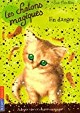 echange, troc Sue Bentley - Les chatons magiques, Tome 5 : En danger