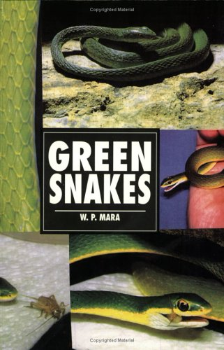 Green Snakes (Herpetology Series)