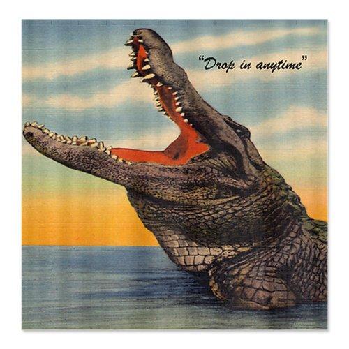 Vintage Alligator Postcard Shower Curtain by