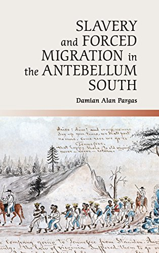 Slavery and Forced Migration in the Antebellum South (Cambridge Studies on the American South)
