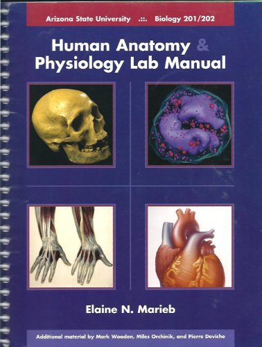 Human Anatomy Physiology Lab Manual, Biology 201/202, Arizona State University (Taken From Human Anatomy & Physiology Laboratory Manual, Seventh Edition) (Taken 202 compare prices)