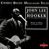 echange, troc John Lee Hooker - Shake It Baby