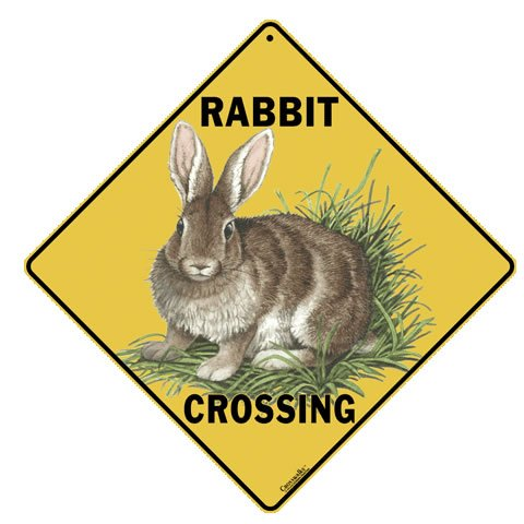 Animal Crossing Sign- Rabbit Crossing Sign