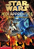 The Day of Reckoning (Star Wars: Jedi Apprentice, Book 8) (0590520792) by Watson, Jude