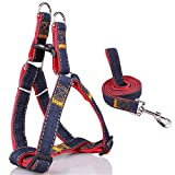 Fairwin No Pull Large Dog Harnesses, Best Easy Walk Dog Harness & Leash for Dogs Walking Training ( Red, 1