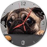 Eyes Animals Dogs Pugs Cookies Sad 10
