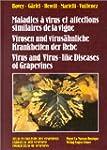 Maladies � virus et affections simila...