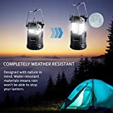 Divine LEDs 2 Pack Ultra Bright Portable Outdoor LED Camping Lantern (Black, Collapsable)