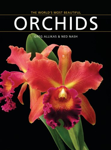 The World's Most Beautiful Orchids