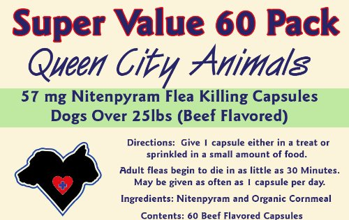 ***SUPER VALUE 60 PACK*** Queen City Animals 57 mg Nitenpyram Beef Flavored Flea Killing Capsules for Dogs Over 25 Pounds. 60 Count. The Same Active Ingredient As the Major National Brand. (Not for Little Dogs)