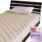 メーカー直販 洗えるベッドパッド 帝人ケミタック わた入り 抗菌防臭効果あり SEKマーク付 シングル 100×200cm