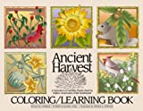 img - for Ancient Harvest: A Selection of Favorite Plants Used by Native Americans of the Southwest book / textbook / text book