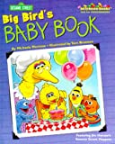 Big Bird's Baby Book (037580403X) by Kleinberg, Naomi