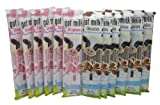 Got Milk Magic Milk Flavoring Straws 6 Strawberry 6 Chocolate (12 Straws Total)