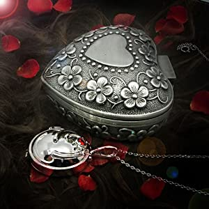 New Style Elena's Vervain Herb Locket Necklace in Silver-plated
