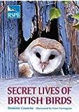 Secret Lives of British Birds (Rspb)