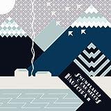 Image of Snowflakes & Carwrecks [Vinyl]