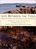 img - for Life Between the Tides: Marine Plants and Animals of the Northeast book / textbook / text book