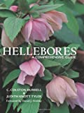 C.Colston Burrell Hellebores: A Comprehensive Guide