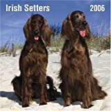 Irish Setters 2006 Calendar (0763189642) by Not Available